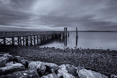 Photograph - A Pier Review by Robin-Lee Vieira
