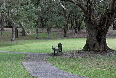 Photograph - A Place For Meditation by Suzanne Gaff