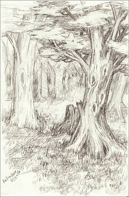 Drawing - A Place To Rest In The Trees by Ruth Renshaw