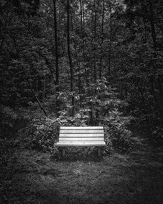 Contemplating Photograph - A Place To Sit by Scott Norris
