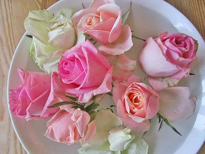 Photograph - A Plate Of Roses by Rosita Larsson