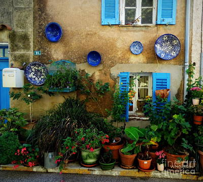 Photograph - A Plethora Of Potted Plants by Lainie Wrightson