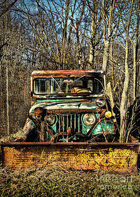Photograph - A Plow In The Woods by Janice Rae Pariza