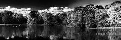 Photograph - A Pond In The Park by Rudi Prott