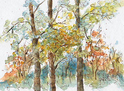 Watercolor And Ink Painting - A Poplar Treeo by Pat Katz