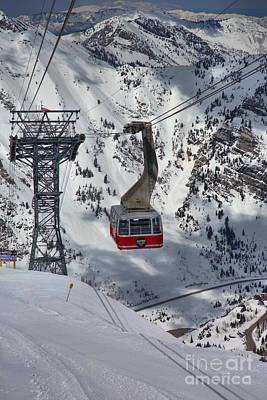 Arial Photograph - A Portrait Of The Snowbird Tram by Adam Jewell
