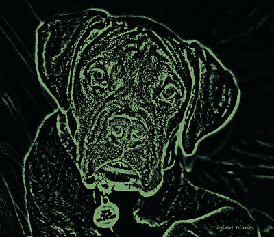 Boxer Puppy Digital Art - A Positive Negative by DigiArt Diaries by Vicky B Fuller