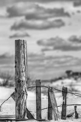 A Posting From Panama City Beach Black And White Art Print by JC Findley
