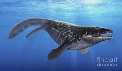 Animals Digital Art - A Prognathodon Saturator Swimming by Sergey Krasovskiy