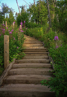 Photograph - A Promising Path by Heidi Hermes