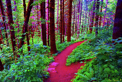 Photograph - A Psychedelic Trail In The Tillamook Forest #1 by Ben Upham III