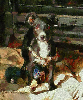 Photograph - A Puppy Can Never Have Too Many Toys by Dorothy Berry-Lound