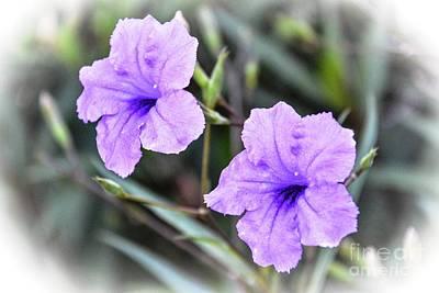 A Purple Pair Art Print by Lisa Kilby