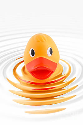 Rubber Duck Photograph - A Quick Dip by Martin Williams