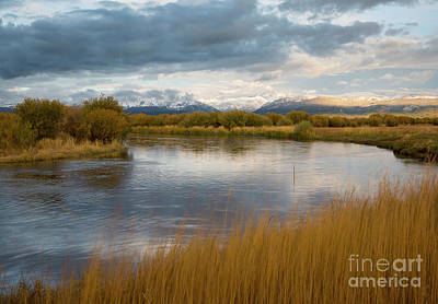 Photograph - A Quiet Evening by Idaho Scenic Images Linda Lantzy