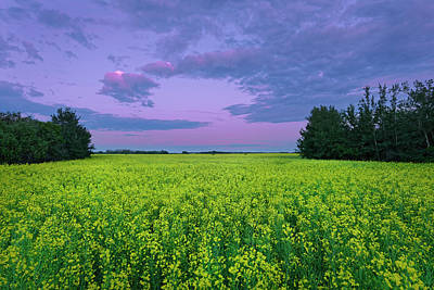 Photograph - A Quiet Evening In Alberta by Dan Jurak