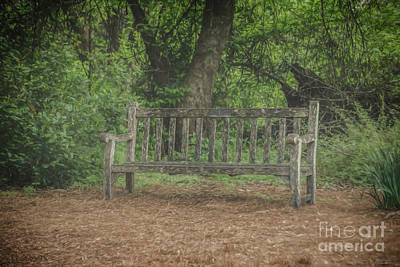 Photograph - A Quiet Place To Rest by Teresa Wilson