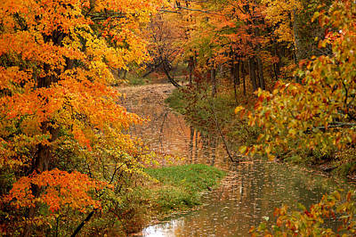 Photograph - A Quiet River In Fall by Linda McRae