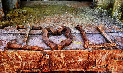 Photograph - A Railroaders Valentine 001 by George Bostian
