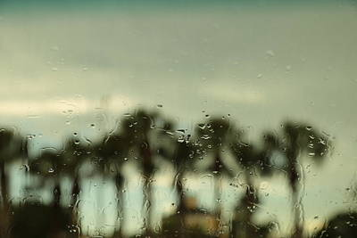 Photograph - A Rainy Day by Christopher L Thomley