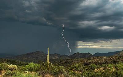 Photograph - A Rainy Sonoran Day  by Saija Lehtonen