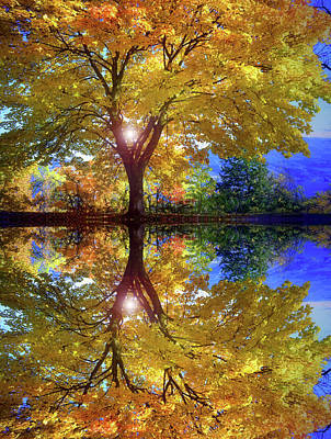 Photograph - A Reflective October by Tara Turner