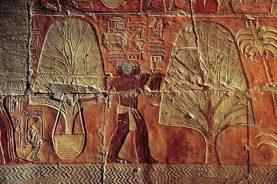 A Relief Of Men Carrying Myrrh Trees Art Print