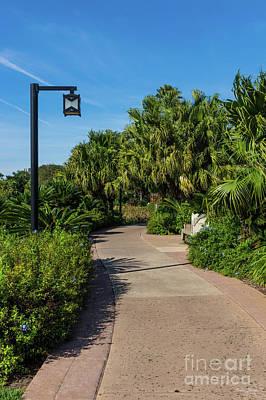 Photograph - A Resort Walk by Jennifer White