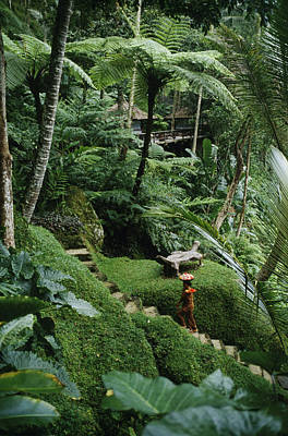 Forests And Forestry Photograph - A Resort Worker Walks Up The Steps by Justin Guariglia