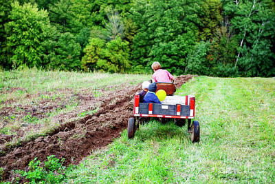 Photograph - A Ride In The Cart by David Arment