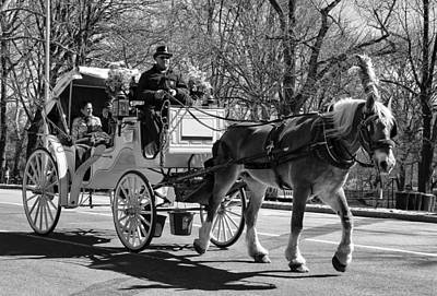 Photograph - A Ride Through Central Park by Ericamaxine Price