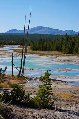 Photograph - A River At Norris Geyser by Jennifer White