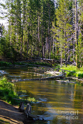 Photograph - A River In Yellowstone by Jennifer White