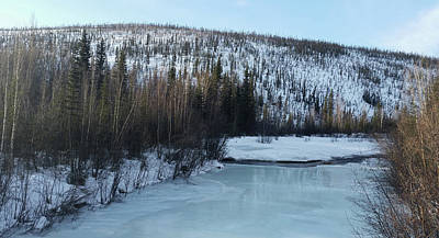 Photograph - A River Near Fairbanks Alaska by Jani Freimann