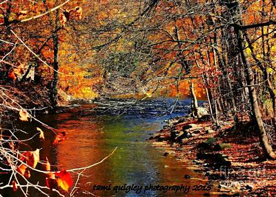 Photograph - A River Runs Through It by Tami Quigley