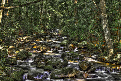 Photograph - A River Through The Woods by Harry B Brown
