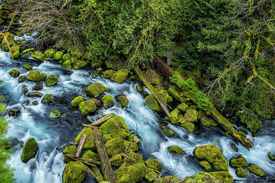 Photograph - A River's Path by Belinda Greb