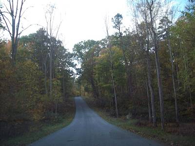 Photograph - A Road Home by Robin Coaker