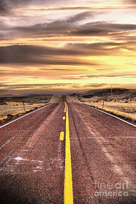 Birds Rights Managed Images - A road that never ends Royalty-Free Image by Jeff Swan