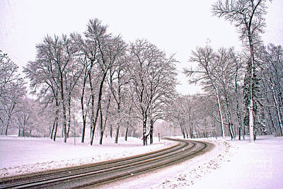 Photograph - A Road To Winter by Kay Novy