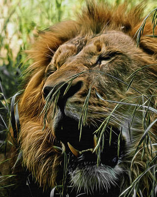 A Roar In The Grass Digital Art Art Print
