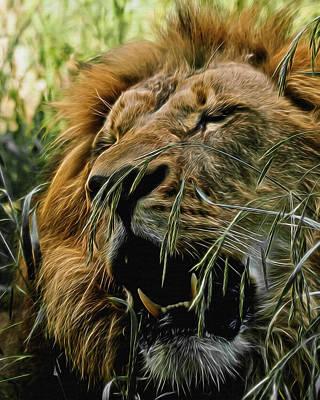 Male Lion Digital Art - A Roar In The Grass Digital Art by Ernie Echols