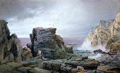 Sea Birds Painting - A Rocky Coast by MotionAge Designs