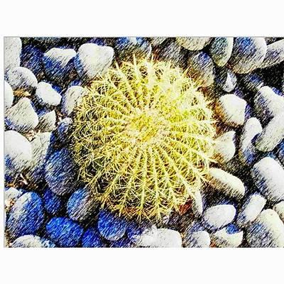 Desert Photograph - A Rocky by Karyn Robinson