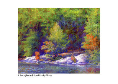 Pastel - A Rockybound Pond Rocky Shore by Betsy Derrick