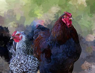 A Rooster And A Hen Art Print