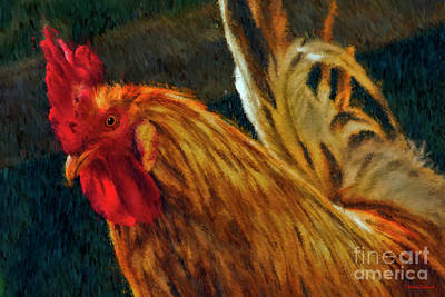 Photograph - A Rooster's Portrait by Blake Richards