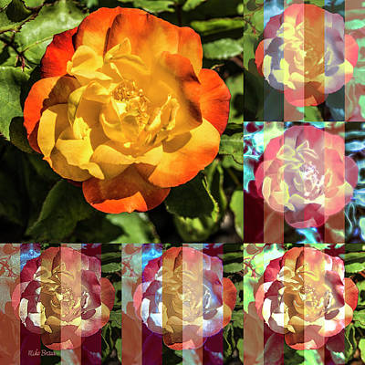 Photograph - A Rose By Any Other Filter by Mike Braun