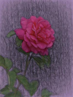 Digital Art - A Rose For Alberta by Ernie Echols