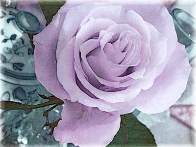 Photograph - A Rose For Diana  by Kate Word